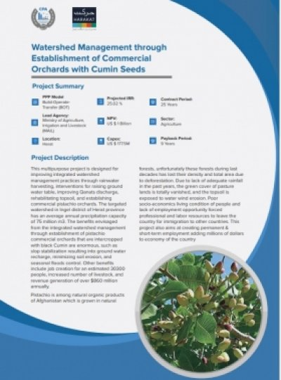 Watershed Management through Establishment of Commercial Orchards with Cumin Seeds